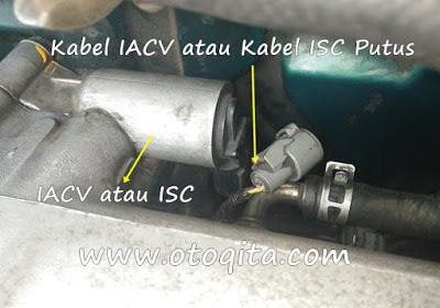 gambar soket kabel IACV atau ISC